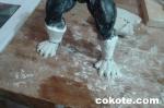 003 mumm-ra_motu_style_cokote